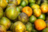 Fresh oranges fruit — Foto Stock