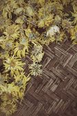Chrysanthemum tea — Stock Photo