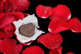 красная роза и шоколадное сердце — Стоковое фото