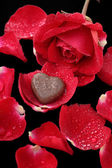 Chocolate heart and red rose — Stok fotoğraf
