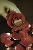 Chocolate heart and red rose — Stock Photo