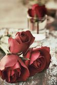 Red rose background — ストック写真