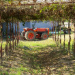 Red old rusty tractor — Stock Photo