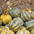 Stock Photo: Harvest pumpkins