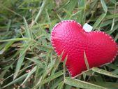δέρμα καρδιά — Φωτογραφία Αρχείου