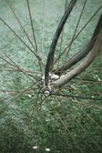 Vintage bicycle. — Stock Photo