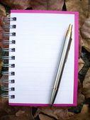 纸质笔记本 — 图库照片