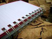 Papieren notitieblok — Stockfoto