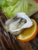 świeże ostrygi sałaty z bliska — Zdjęcie stockowe