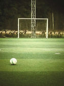 футбол — Стоковое фото