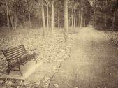 Chaise banc — Photo