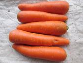 carrots. — Stock Photo