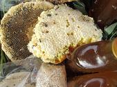 Honeycomb — Stok fotoğraf