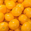 Stock Photo: Group of fresh orange