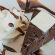 图库照片: Dark chocolate cake with freash white chocolate and melt chocola