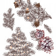 Set of hand drawn christmas decoration elements. pine tree pine branch, pine cone — Векторная иллюстрация