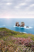 A sunset in the Urros, Arnia Beach, in Cantabria, Spain — Stock Photo