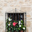 Flowery window - Stock Photo