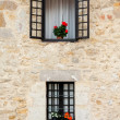 Flowery window — Stock fotografie