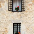 Flowery window — Photo