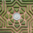 Hedge maze — Stock Photo