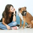 Young womplaying with her dog . Boxer dog. — Stock Photo #12607804
