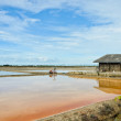 Wooden barn in salt ponds — Stock Photo #12550309