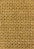 Bagasse fiberboard texture — Stock Photo