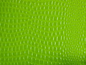 Crocodile skin pattern paper — Stock Photo