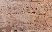 Wall Egyptian relief — Stockfoto