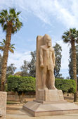 Standing statue of Ramses II — Stock Photo