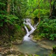 Tropical rainforest waterfall — Stock Photo #13216967