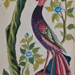 Peacock painting — Stock Photo #13249308