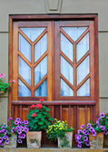 Window and flower pots — Stock Photo