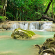 Photo: Tropical rain forest cascading falls