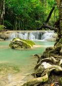 Tropical rain forest waterfall — Stock Photo