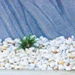 White stones — Stock Photo