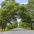 Stock Photo: Countryside road