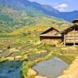 Stock Photo: Hill tribe houses