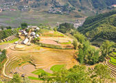Rice terraced fields and Hmong minority village — Stock Photo