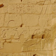 Egyptian relief carved wall — 图库照片