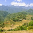 Stock Photo: Mountain scene in Sapa, Vietnam