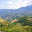 Scenic of mountain rice terraced fields, Vietnam — Stock Photo #13784773