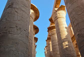 Colonnade of papyrus columns — Stock Photo
