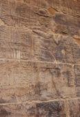 Egyptian relief — Stock Photo