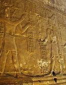 Reliefs of Pharaoh and Horus god — Stock Photo