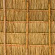 Tropical thatched roof — Foto Stock