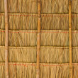 Tropical thatched roof — Stock Photo #18032477