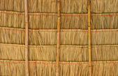 Tropical thatched roof — Stock Photo