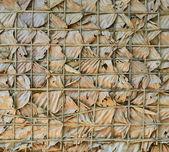 Pared de hojas secas — Foto de Stock